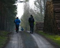 Ludwig-Leichhardt-Trail Ultralauf 2015_32