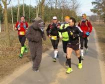 Ludwig-Leichhardt-Trail Ultralauf 2015_52