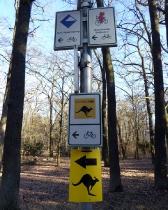 6. Ludwig-Leichhardt-Trail Ultralauf_224