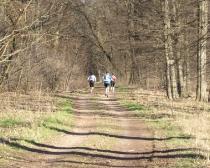 6. Ludwig-Leichhardt-Trail Ultralauf_236