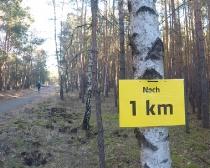 6. Ludwig-Leichhardt-Trail Ultralauf_244