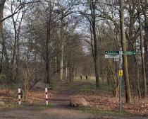 7. Ludwig-Leichhardt-Trail Ultralauf_300