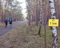 7. Ludwig-Leichhardt-Trail Ultralauf_308