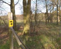 7. Ludwig-Leichhardt-Trail Ultralauf_310